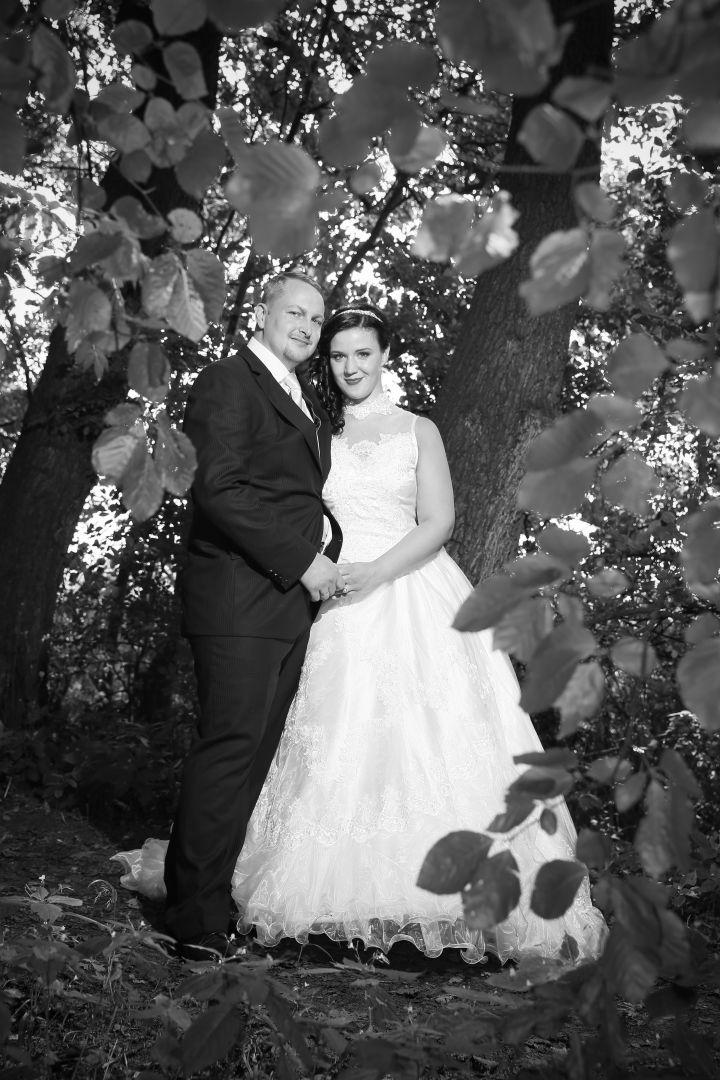 Rückblick Hochzeiten 2015